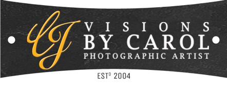 Visions by Carol logo